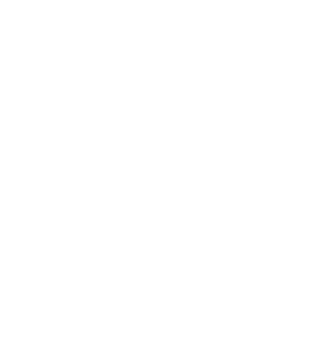 Pilot-Peak-Logo-head
